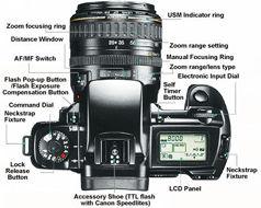 canon eos 5 qd eos a2 a2e technical specification rh mir com my canon eos 1000f manual español canon eos 1000fn manual